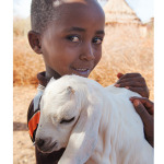 charity_gifts_trocaire_goat